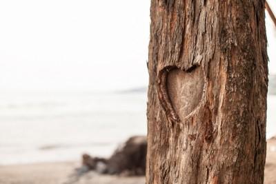 De la serie: El amor salvará el mundo <br> www.hermiorozco.com