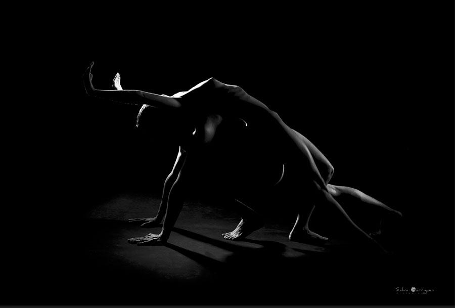 Equilibrios es un trabajo de reflexión sobre la convivencia interpersonal.<br>  Es un ejercicio de luces suspendidas en un lienzo negro.<br>  Es un ejercicio de líneas que muestran la belleza, la fuerza y la plasticidad del cuerpo humano. Unas veces, rectas, tensas e incluso severas. Otras, curvas apacibles, dóciles, envolventes, amables o flácidas. Y todas están en nuestro cuerpo, en nuestros comportamientos…, en nuestros miedos y anhelos.<br>  Es un ejercicio en blanco y negro donde los grises tienen su función socializadora entre los dos extremos. En un mundo idílico donde la masa negra representa nuestro entorno y los blancos muestran al individuo. Los grises hacen su función socializadora, de unión y de mezcla que, en cualquier momento, se funde y desaparece con el entorno.<br>  Es el un ejercicio del ser humano en superar su propia naturaleza, su flexibilidad rivalizada con su rigidez. Su fortaleza se convierte en su debilidad cuando llega a su límite.<br>  Es una reflexión sobre la sociabilidad del individuo. El individuo no puede disociarse completamente de su entorno, con lo cual, a veces, coquetea con él, se uniformiza, se mimetiza para pasar inadvertido entre los otros individuos. En otras ocasiones, lucha contra él para mostrarse como un individuo diferenciado y protagonista de su propia existencia.<br>  Es el intento de mostrar las relaciones entre otros individuos de su especie, los sacrificios, las ayudas, las cesiones… todo ello narrado desde un punto de vista egocéntrico de la persona como individuo. La cooperación entre unos nos separarnos de otros.<br> www.facebook.com/SalvaGarriguesProyectos <br> www.facebook.com/SalvaGarriguesFotografia