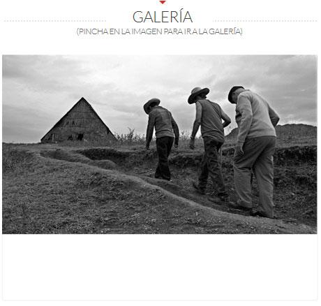 GALERIA-CAÑIBANO
