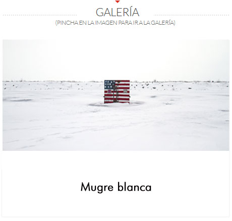 GALERIA-EUNICE-ADORNO