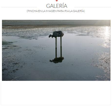 GALERIA-JAVIER-VALLHONRRAT