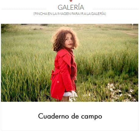 GALERIA-MATIAS-COSTA