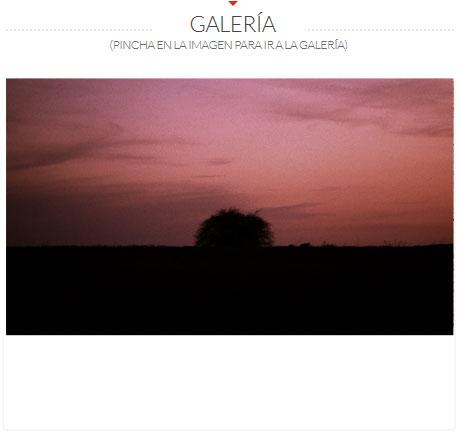 GALERIA-POMES