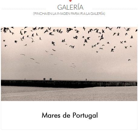 GALERIA-VIOQUE