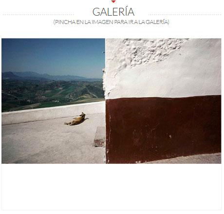 GALERIA-MASATS