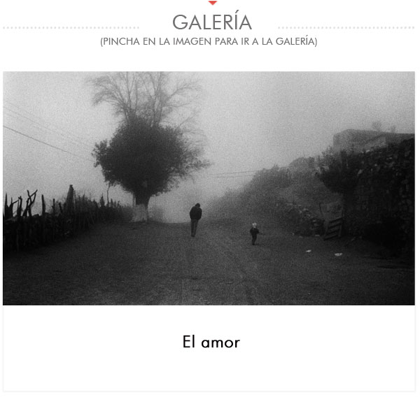 GALERIA-ADRIANA-LESTIDO
